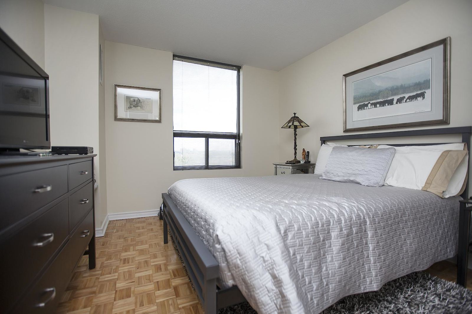 Ottawa Pet Friendly Apartment For Rent | Old Ottawa East ...