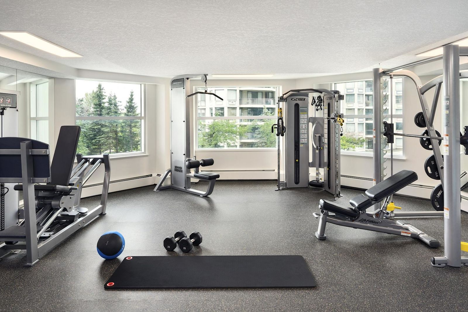 Calgary Pet Friendly Apartment For Rent | Downtown ...